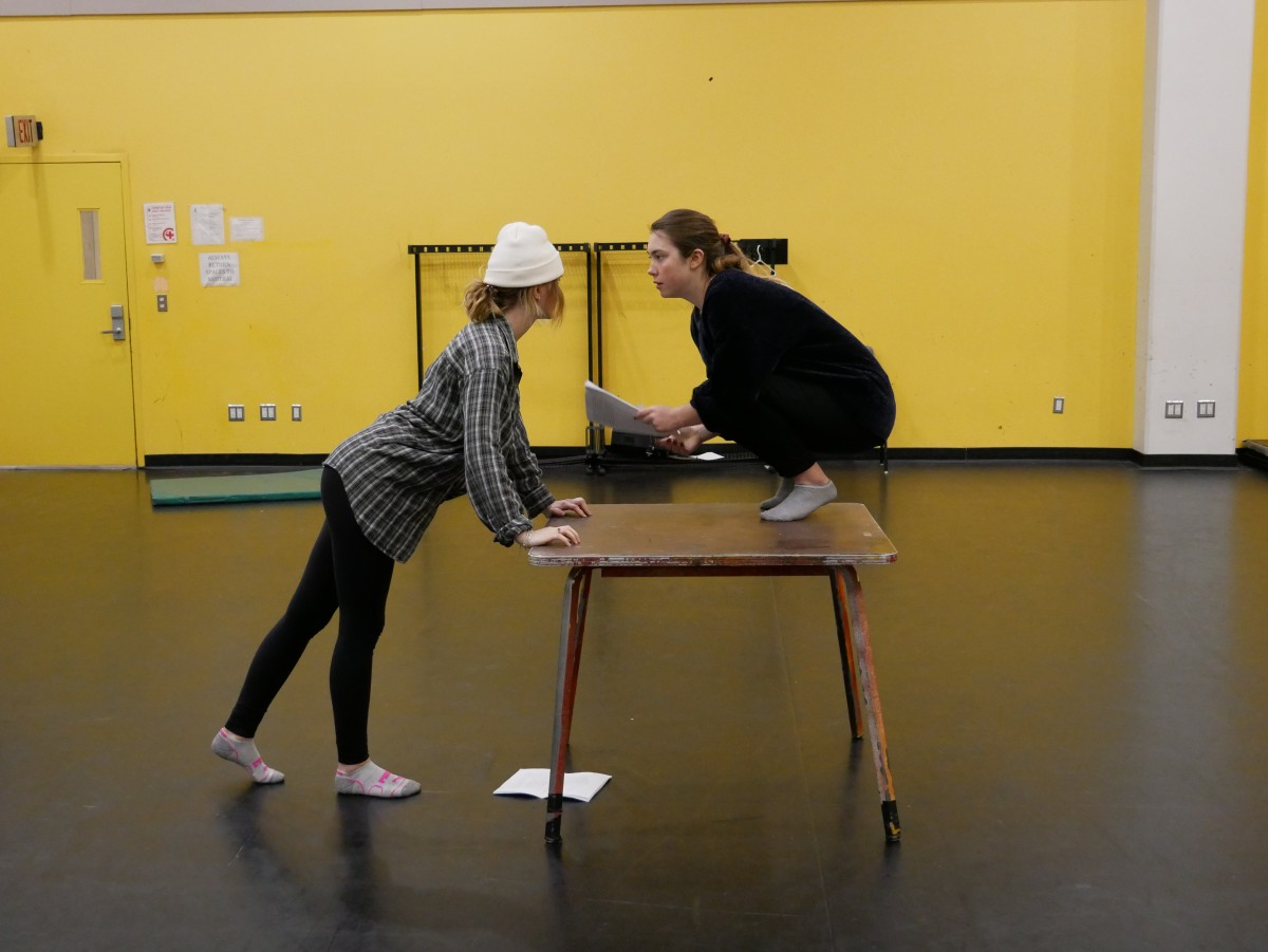 A photograph of two women. One woman is crouched in a squat on top of a table. The other woman faces her, with hands on the table leans in.