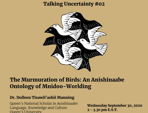 EFC's Talking Uncertainty #02 – The Murmuration of Birds: An Anishinaabe Ontology of Mnidoo-Worlding (Online talk)